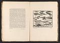 View Broom, vol. 2, no. 2 digital asset: pages 19