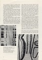 View 'The Weaver as Artist' in Craft Horizons digital asset: page 5