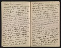 View Francis Davis Millet diary digital asset: pages 2