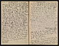View Francis Davis Millet diary digital asset: pages 20
