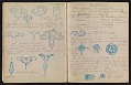 View An unidentified design student's notebook digital asset: pages 28
