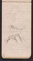 View Sketchbook #8 digital asset: page 14