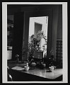View Photograph of Gulliver, Emmy Lou Packard's cat digital asset number 0