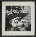 View Philip Pearlstein on grass at the Carnegie Institute of Technology, ca. 1948. digital asset number 0