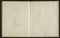 View Fairfield Porter sketchbook digital asset: sketchbook page 27
