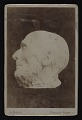 View Cabinet card of Hiram Powers death mask digital asset number 0