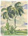 View Two Green Palm Trees by a House in Senado digital asset number 0