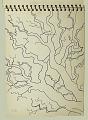 View England 1948 digital asset: sketch 16