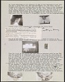 """View A portion of Forrest Bess' """"Medical thesis."""" digital asset number 1"""