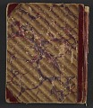 View Joseph Lindon Smith diary of travel in Egypt digital asset: cover verso