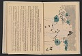 View Indian ceremonial dances in the Southwest, a block-book digital asset: pages 7