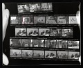 View Contact sheet with images of William Christenberry in his studio, and others digital asset number 0