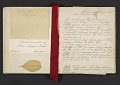 View Margaret Tupper True diary concerning Allen Tupper True as a baby digital asset: pages 4