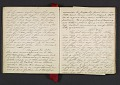 View Margaret Tupper True diary concerning Allen Tupper True as a baby digital asset: pages 7