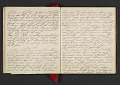 View Margaret Tupper True diary concerning Allen Tupper True as a baby digital asset: pages 15