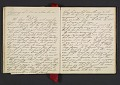 View Margaret Tupper True diary concerning Allen Tupper True as a baby digital asset: pages 16