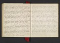 View Margaret Tupper True diary concerning Allen Tupper True as a baby digital asset: pages 41