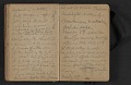 View Elihu Vedder travel diary digital asset: pages 17