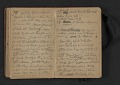 View Elihu Vedder travel diary digital asset: pages 29