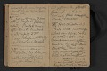 View Elihu Vedder travel diary digital asset: pages 35