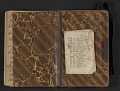 View Elihu Vedder travel diary digital asset: pages 59