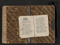 View Elihu Vedder travel diary digital asset: pages 67