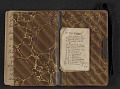 View Elihu Vedder travel diary digital asset: pages 72