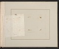 View Scrapbook of materials relating to George Whitney's art collection digital asset: page 58