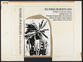 View War whoops and medicine songs [sound recording] : the music of the American Indians including songs of the Winnebago, Chippewa, Sioux, Zuni, and Acoma / collected and edited by Charles Hofmann digital asset number 1