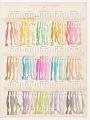 View Carte de Nuances de la Chambre Syndicale des Teinturiers digital asset number 3
