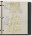 View Notebook of lace samples digital asset number 2