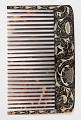 View Comb Case with Wig and Lice Combs digital asset number 2