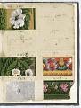 View Sample book digital asset number 156