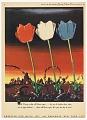 View Three Tulips, Advertisement for American Silk Mills digital asset number 0