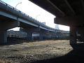 View Underpass Park digital asset number 2