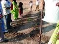 View Drip Irrigation System digital asset number 1