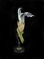 View Salvia Officinalis digital asset number 1