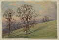 View Study of Landscape, Chester County, PA digital asset number 0