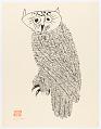 View Owl I digital asset number 0