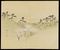 View Album: Miscellaneous Sketches digital asset number 21