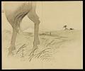 View Album: Miscellaneous Sketches digital asset number 33