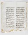 View Washington Manuscript I - Deuteronomy and Joshua (Codex Washingtonensis) digital asset number 11