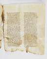View Washington Manuscript I - Deuteronomy and Joshua (Codex Washingtonensis) digital asset number 14