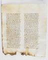 View Washington Manuscript I - Deuteronomy and Joshua (Codex Washingtonensis) digital asset number 18