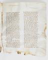 View Washington Manuscript I - Deuteronomy and Joshua (Codex Washingtonensis) digital asset number 24