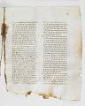 View Washington Manuscript I - Deuteronomy and Joshua (Codex Washingtonensis) digital asset number 28