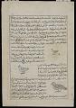 View Starling (Zurzur), Falcon (Zamaj), Quail (Samani), from <em>Aja'ib al-makhluqat</em> (Wonders of Creation) by al-Qazvini digital asset number 0