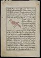 View Magpie ('Aq'aq), A Miraculous Bird ('Anqa), from <em>Aja'ib al-makhluqat</em> (Wonders of Creation) by al-Qazvini digital asset number 1