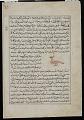 View Ostrich (Na'ama), from <em>Aja'ib al-makhluqat</em> (Wonders of Creation) by al-Qazvini digital asset number 1