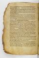 View Washington Manuscript III - The Four Gospels (Codex Washingtonensis) digital asset number 173